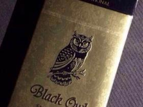 BLACK OWL猫头鹰外烟 粗支