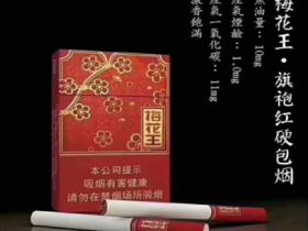 梅花王旗袍外烟